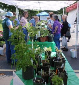Cover photo for 24th Local Gardener's Spring Plant Sale April 28th