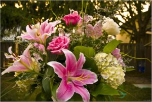 Cover photo for Arranging Flowers From Your Garden