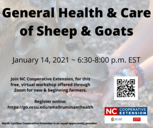 Cover photo for General Health and Care of Sheep and Goats